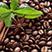 aboutcoffee instrument