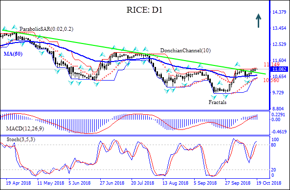 Rice price breaches above resistance line Technical Analysis IFC Markets